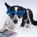 Andre Sugars' Under-Utilized Pet Tax Deductions